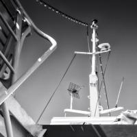 <em>La dame du ferry</em><br />
